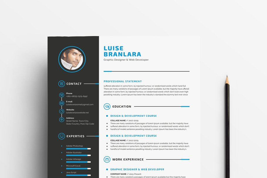 设计师简历模板 Professional Resume/CV