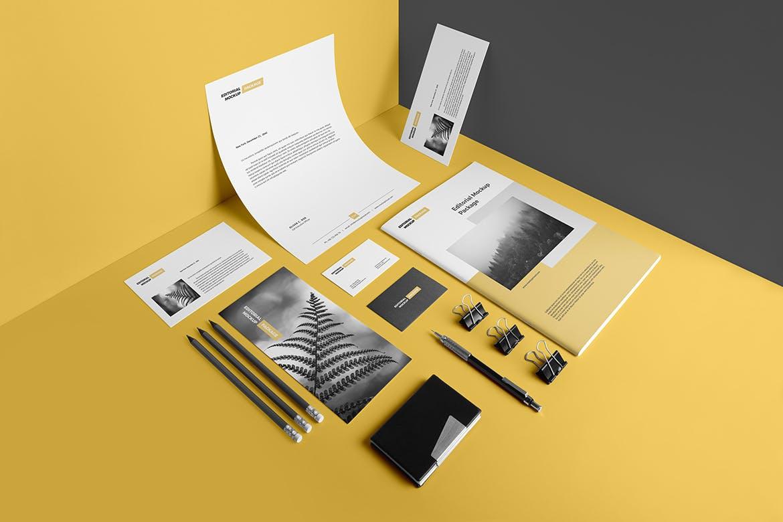 精致企业视觉识别系统模板展示样机素材2Stationery Branding Mockup Vol. 2