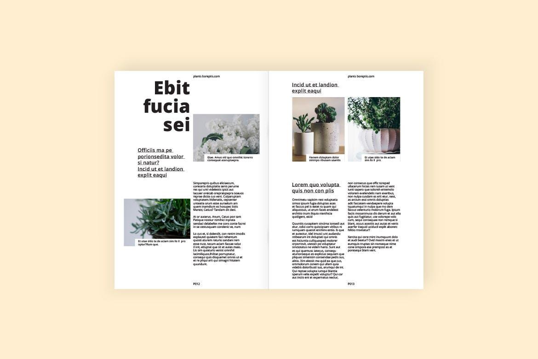 绿色生命画册模板素材画册模板素材下载Indoor Plants - A Magazine Template