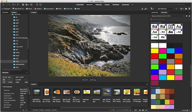 Adobe Bridge 2020 Win中文破解版免费下载