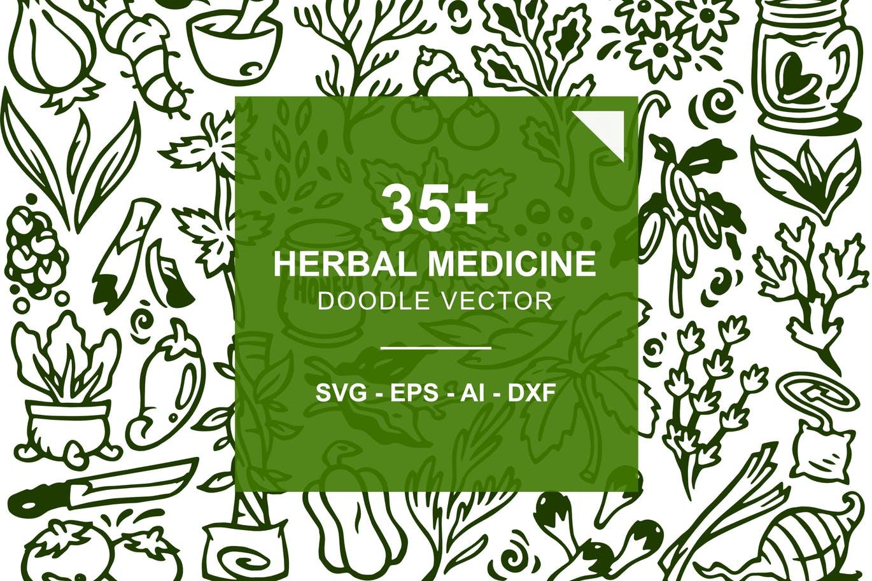 35+草药植物涂鸦矢量图案背景纹理Herbal Medicine Doodles