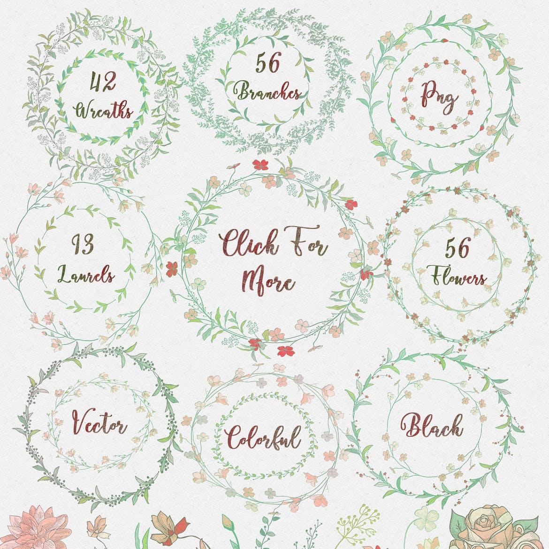 郁郁葱葱的绿叶系列167朵炫彩黑色花卉元素Greenery Collection: 167 Elements