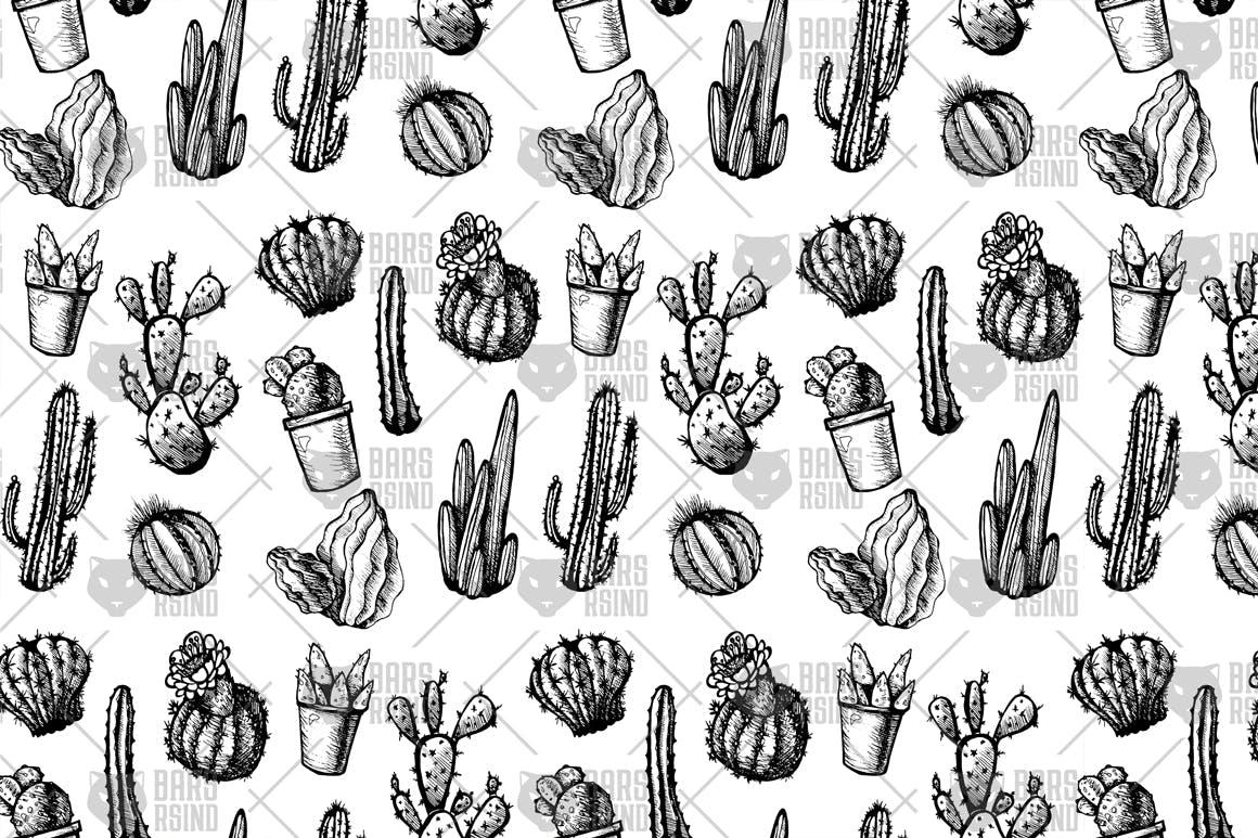 绿色墨西哥仙人掌设计元素图案纹理背景Mexican Cactus Patterns