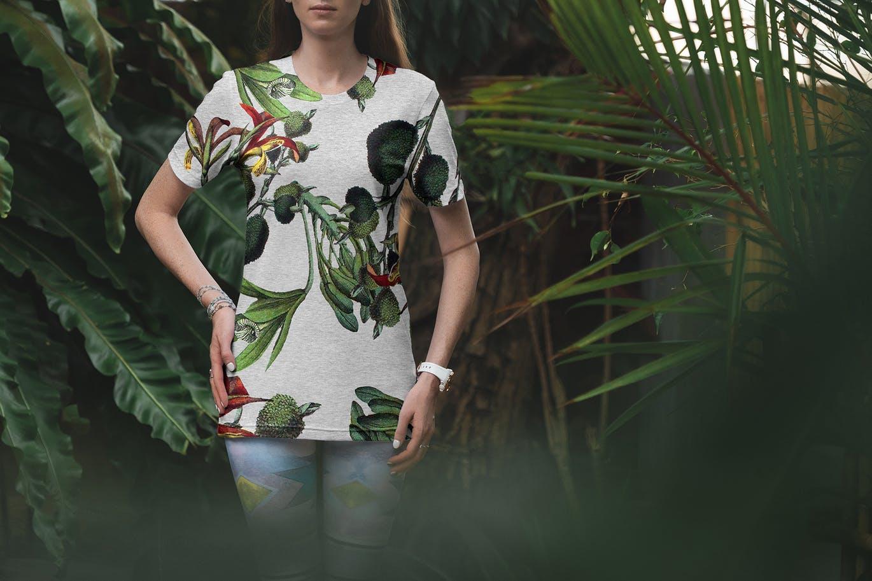 优雅时尚高端简约清新复古风格的热带植物棕榈树植物插画元素大集合(png) vintage-palms-tropical-illustrations-set