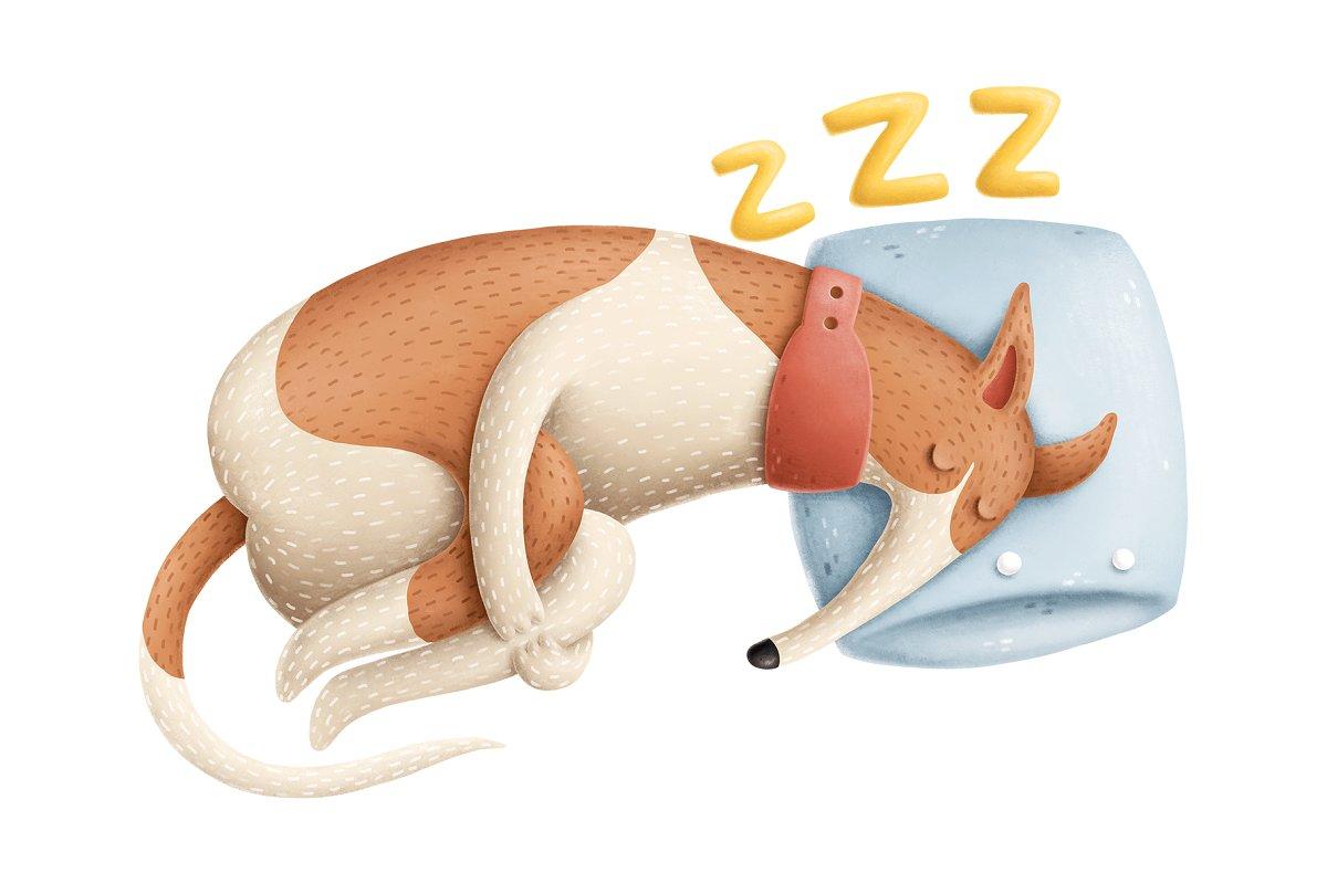 犬类手绘插画卡通狗狗动物插画合集DOGS CHARACTERS COLLECTION
