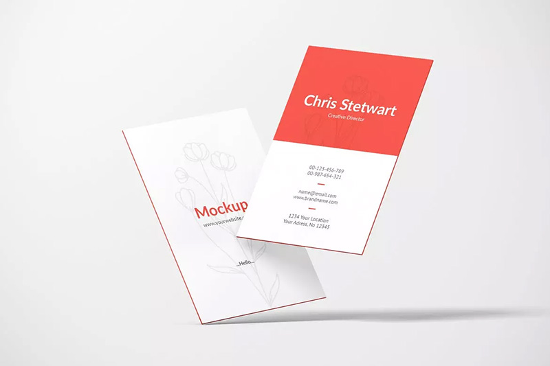 竖版设计风格企业名片效果图样机模板designshidai_yj186