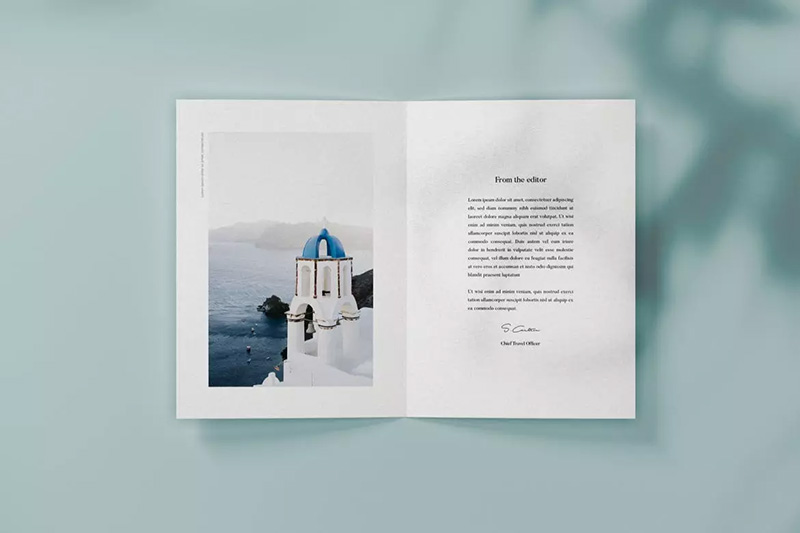 垂直双折页小册子排版预览模板合集designshidai_yj158
