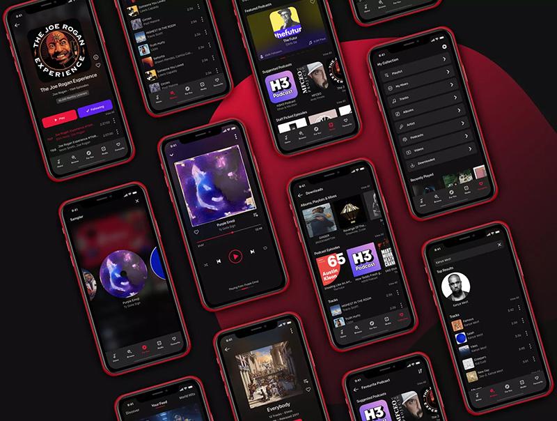 带有设计系统的响应式设计音乐应用程序UI套件designshidai_ui40