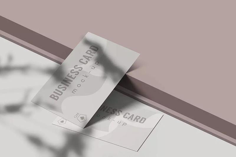 企业名片设计效果图样机模板designshidai_yj216