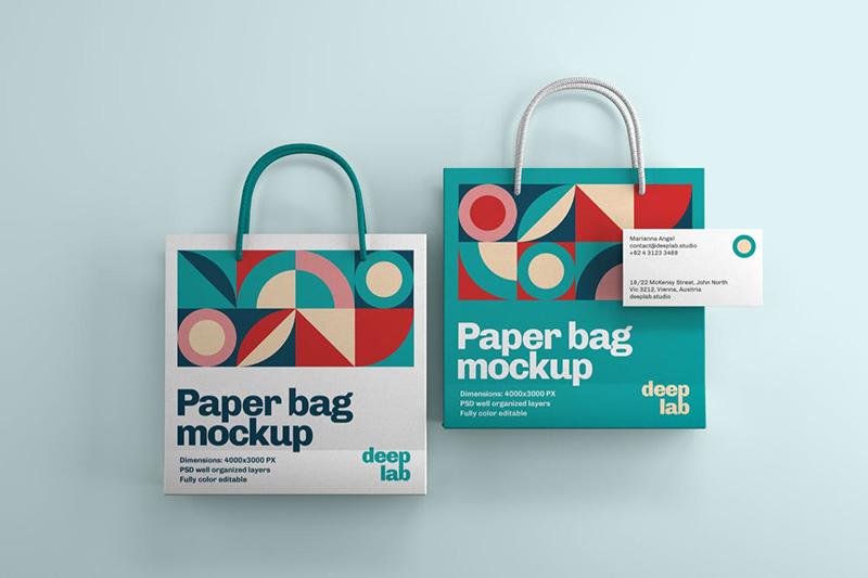 纸质购物袋&名片品牌设计样机集designshidai_yj348