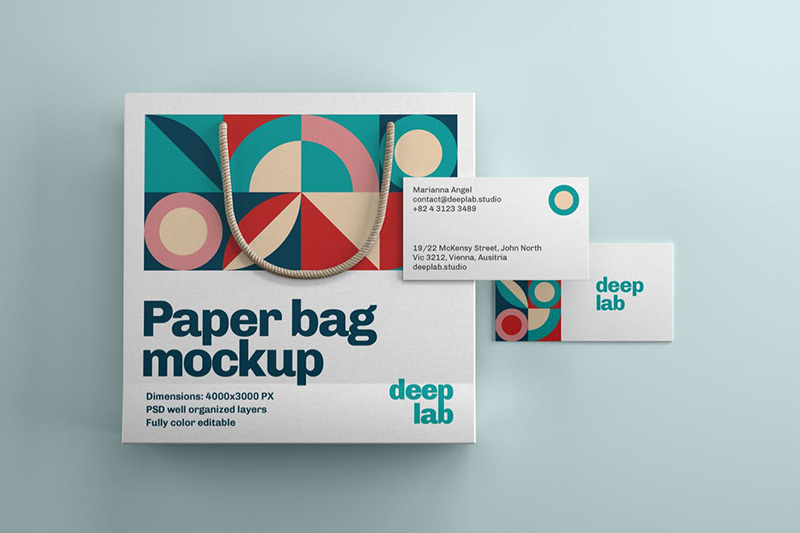 纸质购物袋&名片品牌设计样机集designshidai_yj342