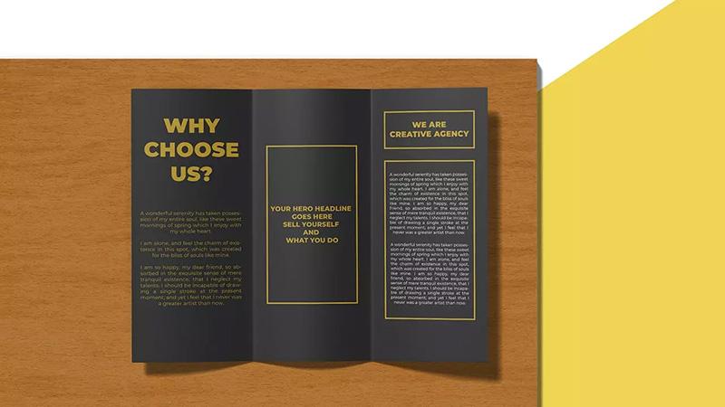 2个视图三折页宣传册设计样机模板designshidai_yj267