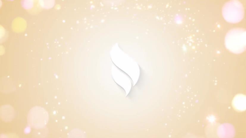 简约风格圣诞节Logo徽标演示散景视频ae素材designshidai_video0020