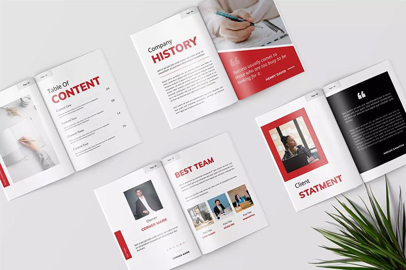 客户项目投标方案计划书版式设计模板designshidai_zhazhi008