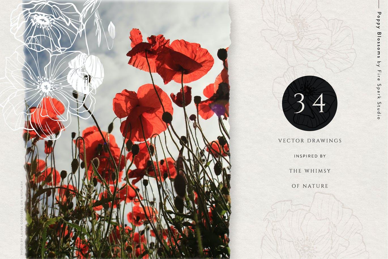 美丽的花卉矢量插图下载designshidai_chahua020