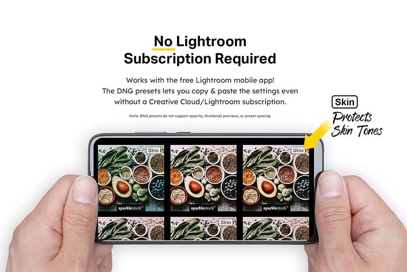 20款美食摄影照片后期调色LR预设designshidai_Lryushe035