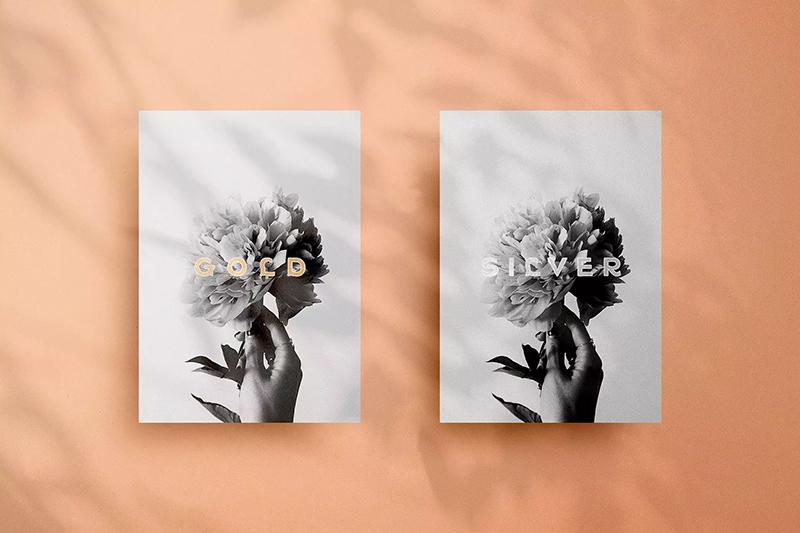 植物/窗户阴影文具品牌VI样机designshidai_yj515