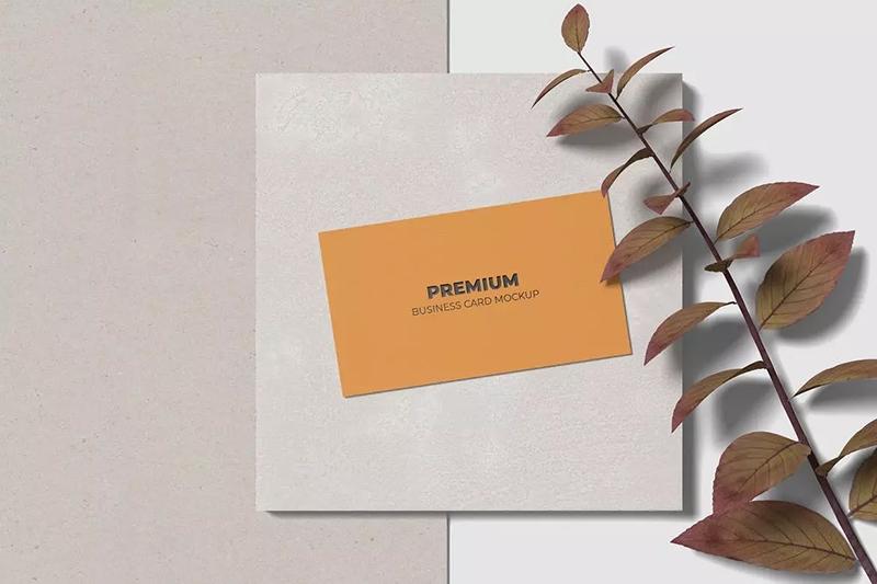 简约极简主义名片设计广告展示模型designshidai_yj573