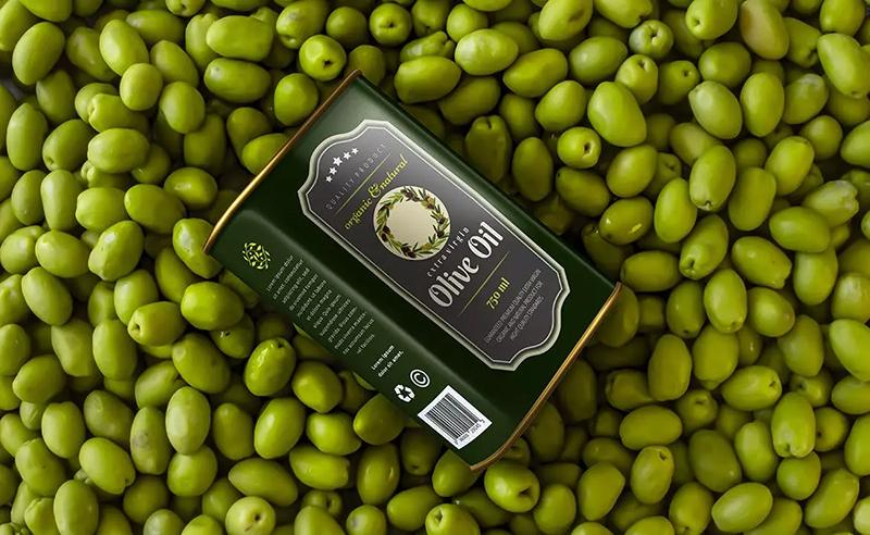 经典豪华装普通装橄榄油包装designshidai_yj593
