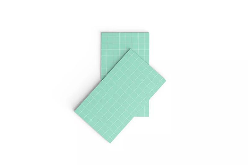 竖版名片版式设计样机模板designshidai_yj580
