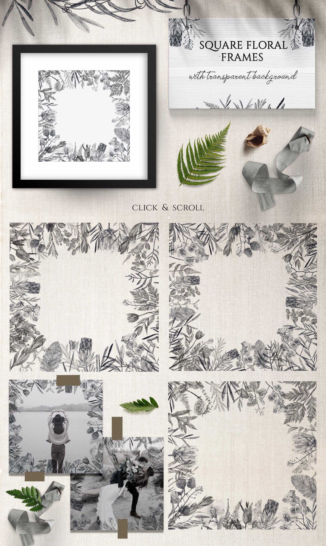 简约手绘铅笔素描花卉植物插画合集designshidai_chahua073