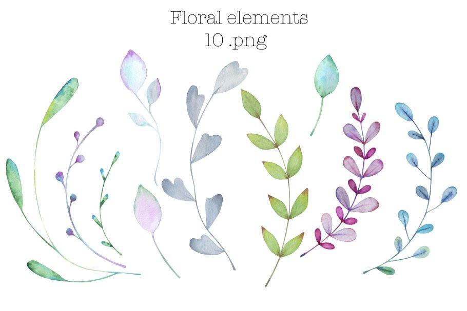 简约时尚经典水彩花卉元素designshidai_chahua090