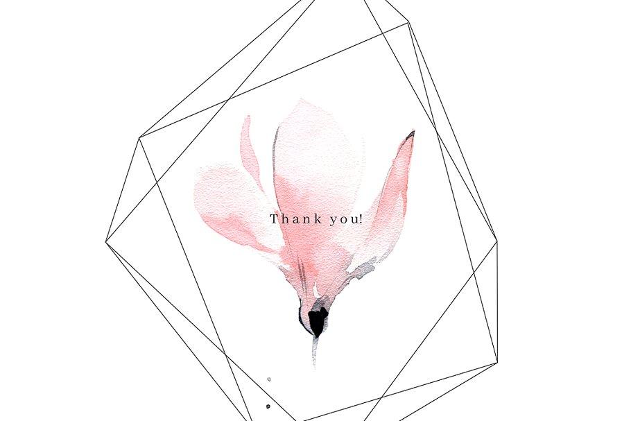 高端精美优雅的水彩动物植物元素插图合集designshidai_chahua093
