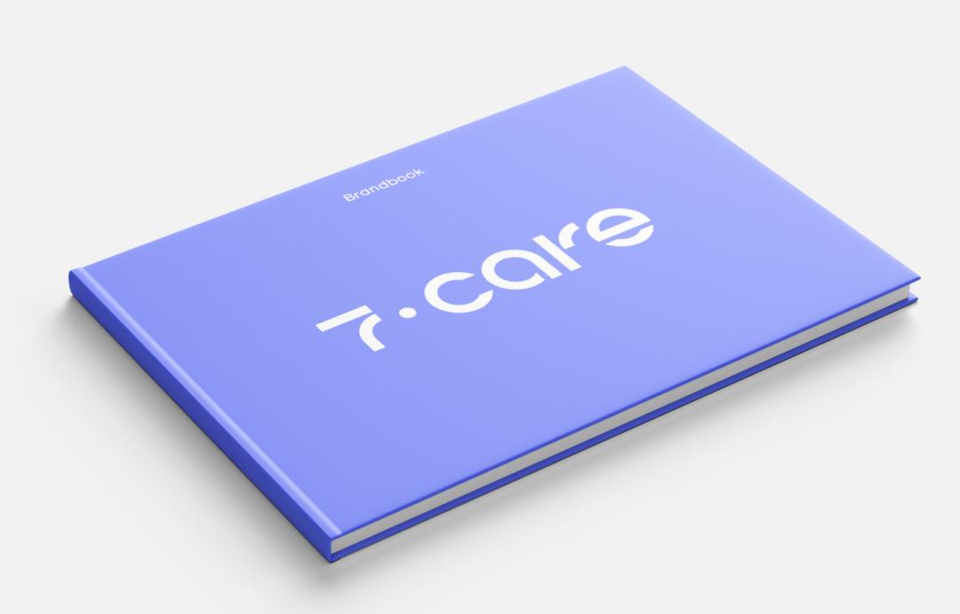 设计品牌书的规范与价值介绍+大厂VI手册模板PDF下载